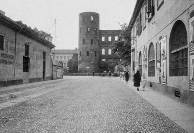 Arpino, Calvino, Torino